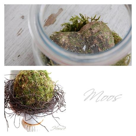 Moos Deko /moss decoration
