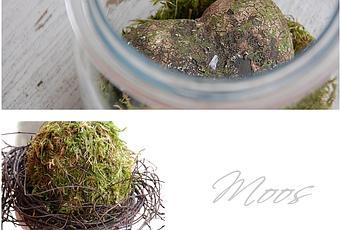 moos deko moss decoration. Black Bedroom Furniture Sets. Home Design Ideas