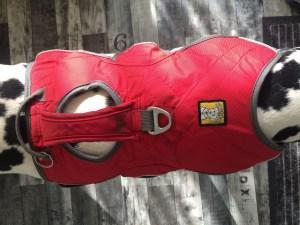 Web Master Harness Hundegeschirr von Ruffwear