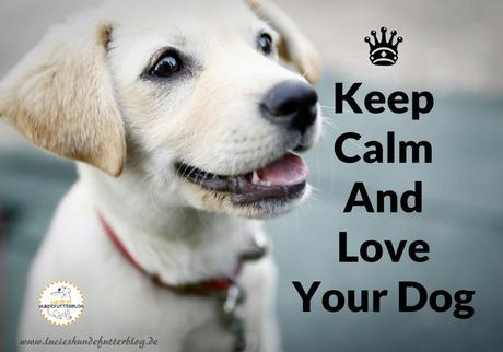 keep calm doglove