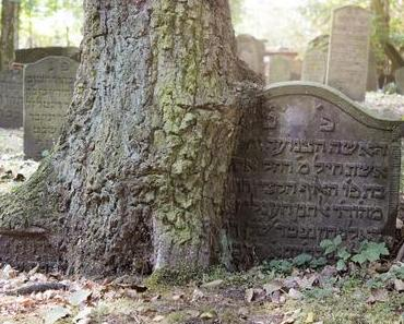 Jewish Graveyard Altona