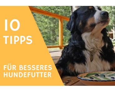 10 Tipps wie du das Futter deines Hundes sofort aufwerten kannst