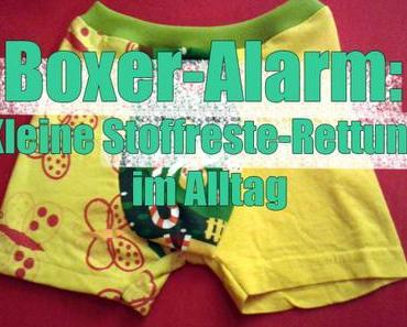 Boxer-Alarm: Kleine Stoffreste-Rettung im Alltag