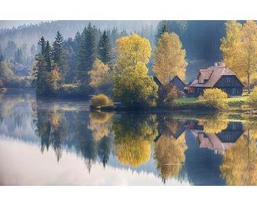 Bild der Woche: Herbstidylle in der Walstern
