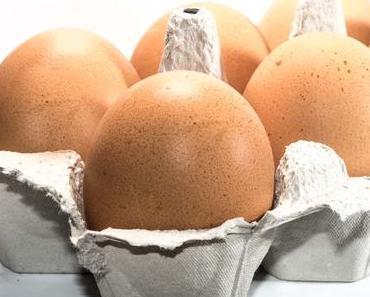 Welt-Ei-Tag – der internationale World Egg Day 2016