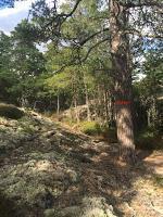 Auf einsamen Pfaden durch Södermanland - Teil 1