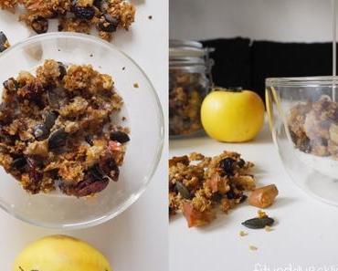 {Clean Eating} Herbstliches Quinoa Apfel Müsli
