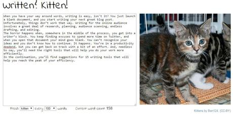 Screenshot_Written_Kitten