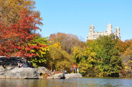 NYC Central Park Travelling Traveling Travelblogger