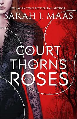 [Aktion] Buch Safari #55 ~ A Court of Thorns and Roses