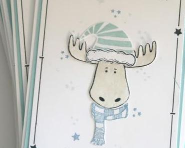 Weihnachten ist Gutscheinzeit & Katalogvorbestellung