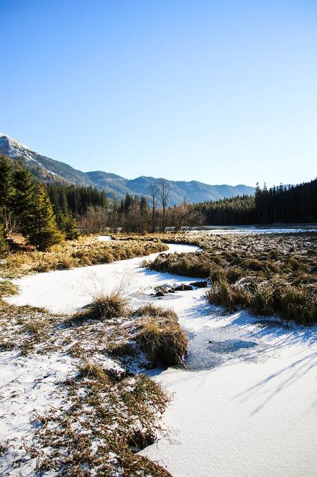 Steiermark: Vom fröstelnden Spaziergang um den Ingerinigsee, zwei Nächten in G'Schlössl Murtal und einem leckeren Essen beim Hofwirt!