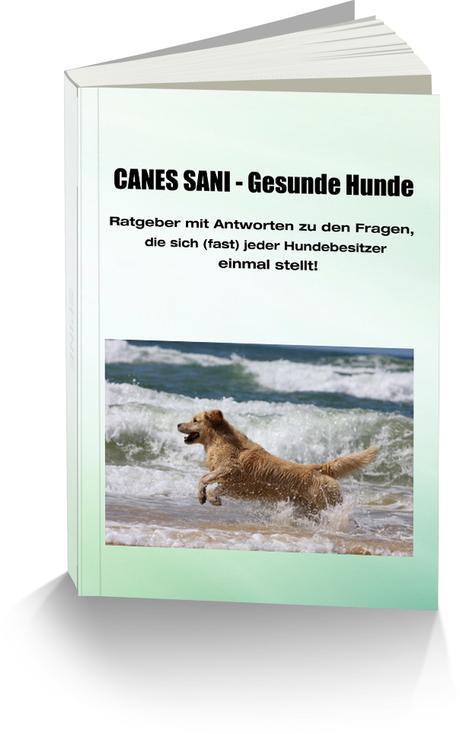 Türchen Nr. 12: Gaby Engelbarth von www.gesunde-hunde-luenburg.de