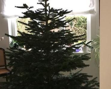 Der Baum steht