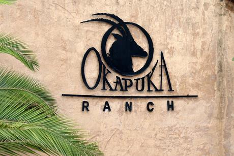 Namibia - Okapuka Ranch