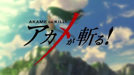 Anime Review: Akame ga Kill von Fuma
