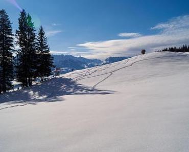 Winter-/Schneeschuhwanderung von Reit im Winkl zur Hutzenalm - Embacher Alm – Frankenalm