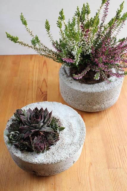 diy schalen aus beton. Black Bedroom Furniture Sets. Home Design Ideas