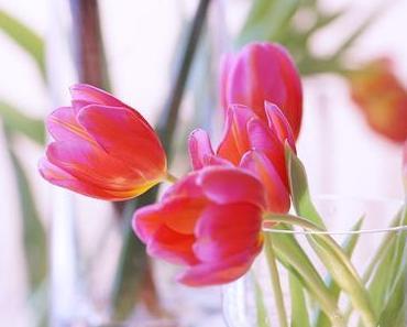 Friday-Flowerday 07/17