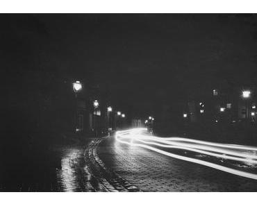 Nachtmusik: fox – forest dreams