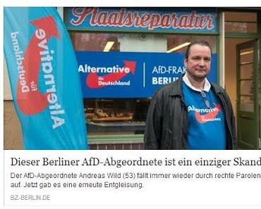 AfD-Bashing: Wenn es Deutsch-Türken gibt, gibt es eben auch Deutsch-Deutsche