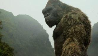 Kong-Skull-Island-(c)-2017-Warner-Bros.(13)