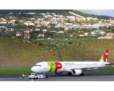 HALB-ZEIT auf Madeira