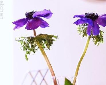Friday-Flowerday 11/17