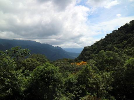 Serra Verde Express |Eine traumhafte Zugfahrt von Curitiba nach Morretes im Süden Brasiliens
