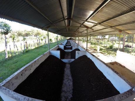 Die Wurmfarm bei unserer Erfahrung mit Workaway