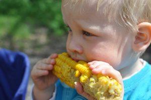 Vegane Kinderernährung Bild 2