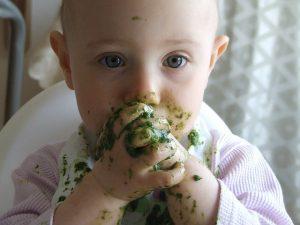 vegane Kinderernährung Bild 1