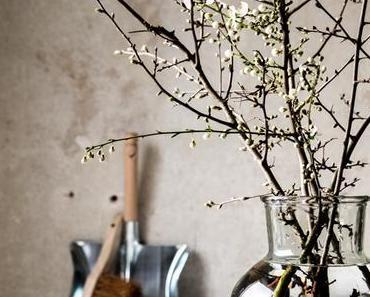 Heute mal halbe Bäume in meiner Vase