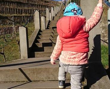 Ab ins Umland - Ausflugsziel Spitzhaustreppe Radebeul