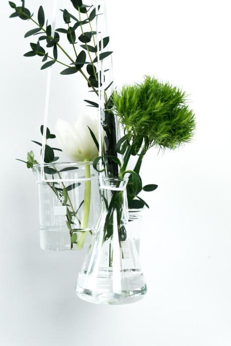 gefunden: 6 kreative Ideen für Pflanzen Deko