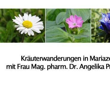 Vorankündigung: Kräuterwanderungen in Mariazell