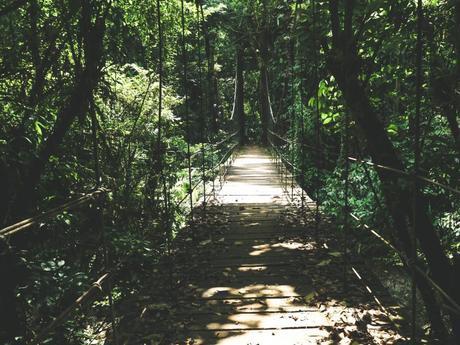 Morretes & Marumbi Nationalpark: Ein kleines Stück vom Paradies im Süden Brasiliens