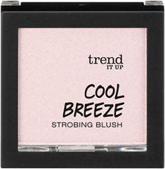 4010355280787_trend_it_up_Cool_Breeze_Strobing_Blush_010