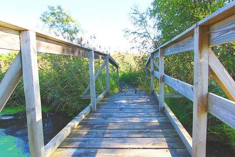 Wohnmobil Reiseberichte Holzbrücke Naturschutzgebiet