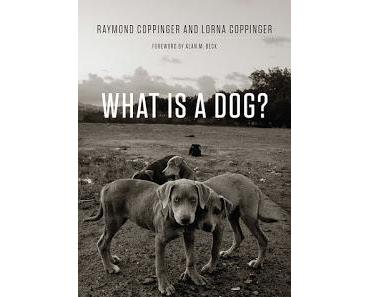 Rezension: What is a Dog? von Ray and Lorna Coppinger