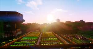 Minecraft – Life in the Woods (After Humans) – LitW