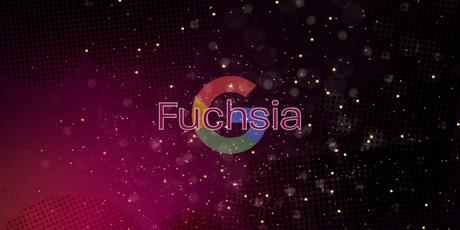 Google Logo und Fuchsia