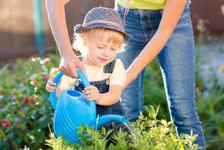 Gartenarbeiten im mai - Gartenarbeiten im mai ...