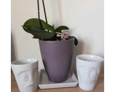 Sprechende Tassen und Schalen - Tassen58