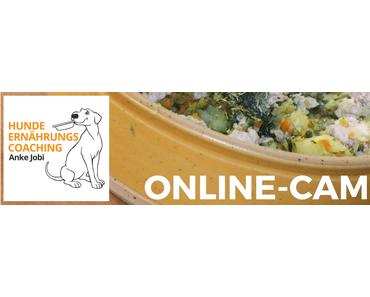Online-Campus ist jetzt online!