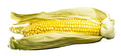 Kuriose Feiertage - 11. Juni - Tag des Maiskolbens – der US-amerikanische National Corn on the Cob Day - 1 (c) 2015 Sven Giese