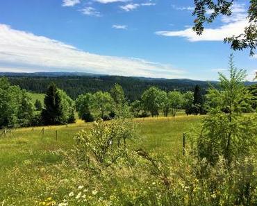 Sommer in der Schweiz: Wie wär's mit Bike-Ferien im Jura?