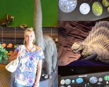 GONDWANA – das Praehistorium – unser Video vom Urzeitmuseum