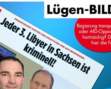 Springer-Presse leistet aus Sorge um die innere Sicherheit Wahlkampfhilfe für die Verursacher des Kriminalitätsanstiegs