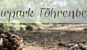 {UNTERWEGS} Naturpark Föhrenberge zwischen Husarentempel Burgruine Mödling